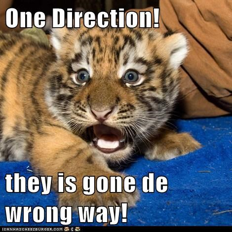 One Direction!  they is gone de wrong way!
