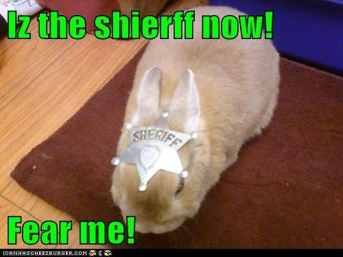badge,bunny,fear me,hat,power,sheriff