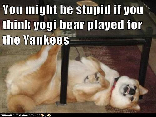 You might be stupid if you think yogi bear played for the Yankees