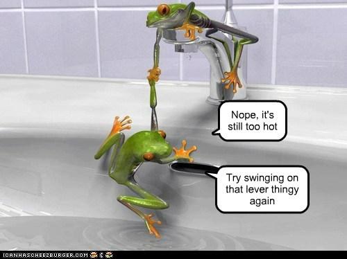 bathtub,frogs,helping,teamwork,too hot,water