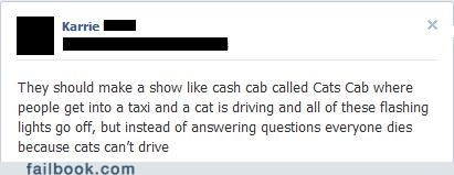 "Failbook: Instead of ""Welcome to Cash Cab,"" They Say ""Meow"" Because They're Cats"