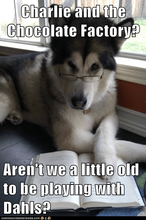 charlie and the chocolate,charlie and the chocolate factor,Condescending Literary Pu,Condescending Literary Pun Dog,dogs,husky,memes all over the place,roal