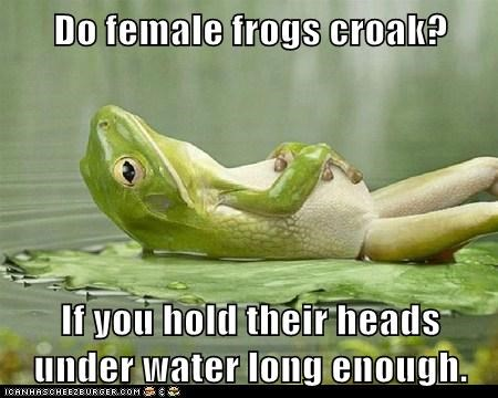 Do female frogs croak?  If you hold their heads under water long enough.