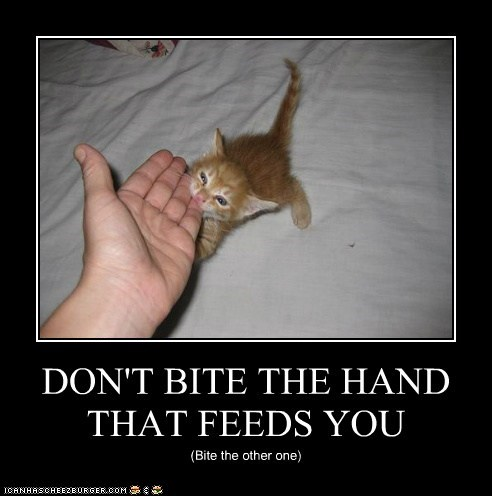 DON'T BITE THE HAND THAT FEEDS YOU