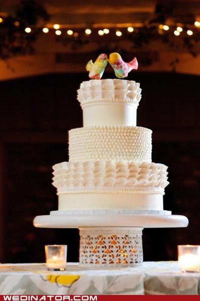 birds,cakes,funny wedding photos,just pretty,wedding cakes