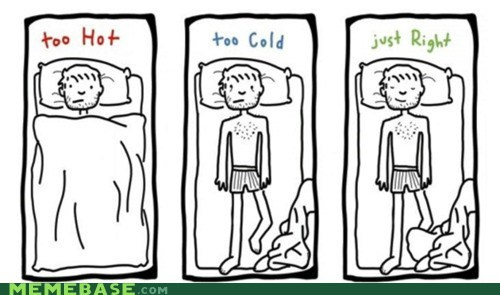cold,goldilocks,hot,sleeping