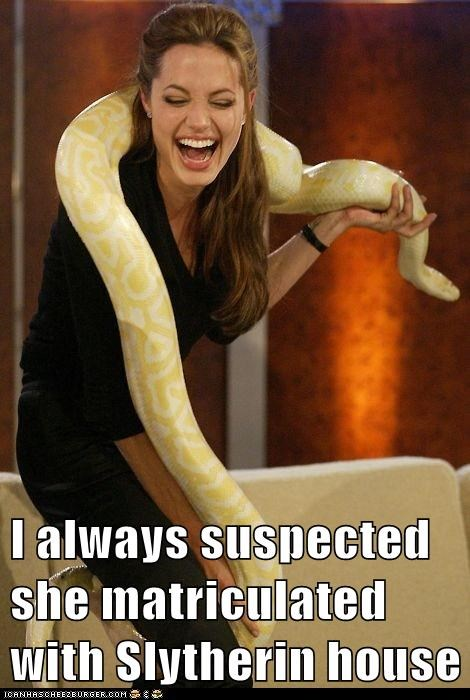 actor,Angelina Jolie,animal,celeb,funny,snake