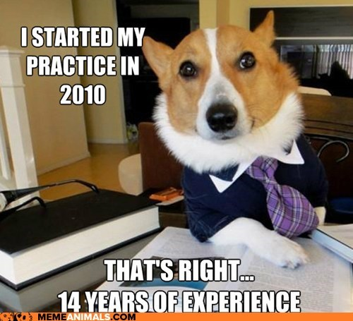 corgis,dog years,dogs,experience,Lawyer Dog,Lawyers,Memes