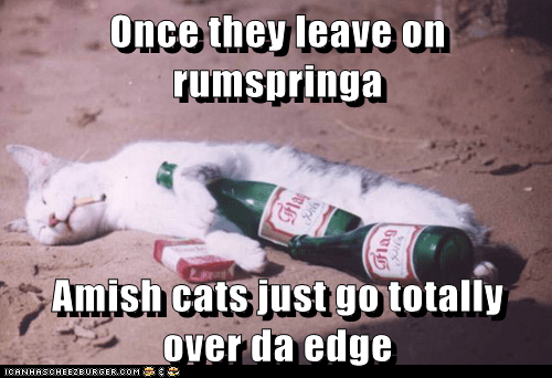 Once they leave on rumspringa  Amish cats just go totally over da edge