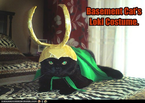 Basement Cat's Loki Costume.