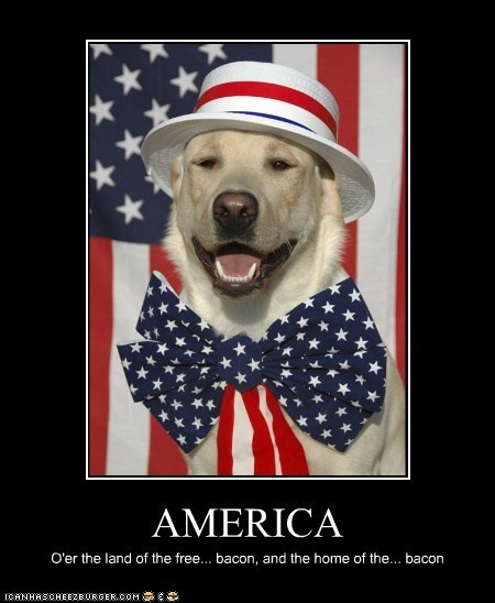 america,American Flag,bacon,dogs,fourth of july,lyrics,patriotic,star-spangled banner