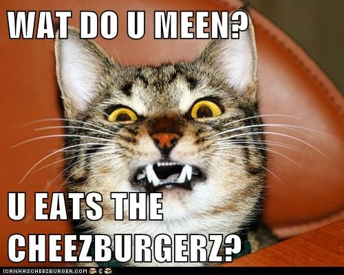 WAT DO U MEEN?  U EATS THE CHEEZBURGERZ?