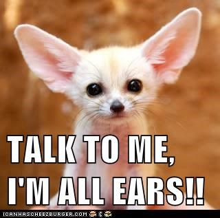 TALK TO ME, I'M ALL EARS!!