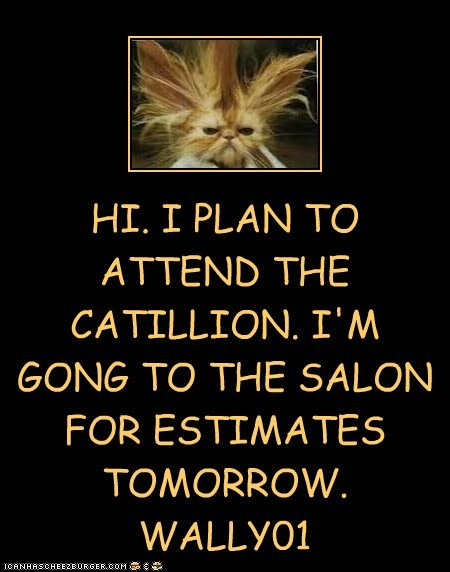 HI. I PLAN TO ATTEND THE CATILLION. I'M GONG TO THE SALON FOR ESTIMATES TOMORROW. WALLY01