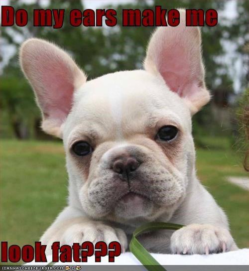 Do my ears make me  look fat???