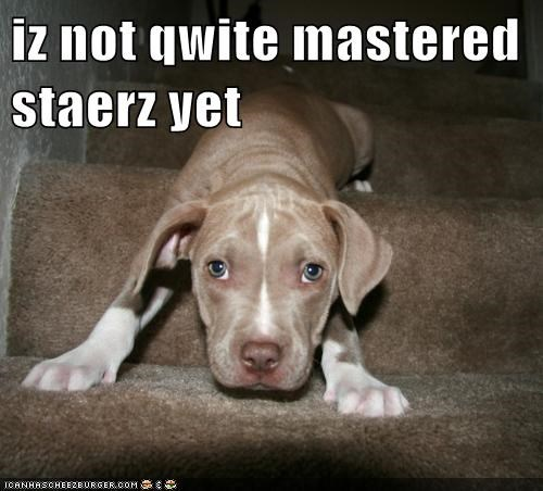iz not qwite mastered staerz yet