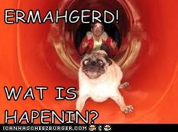 ERMAHGERD!  WAT IS HAPENIN?