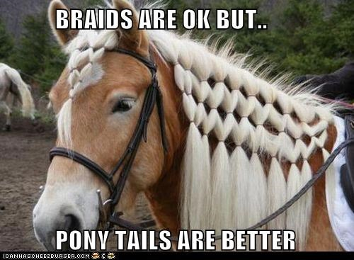 BRAIDS ARE OK BUT..            PONY TAILS ARE BETTER