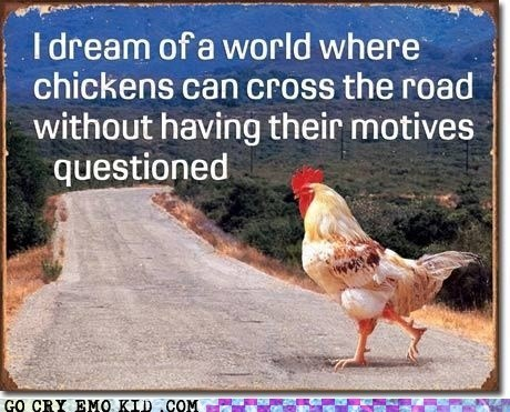 best of week,chickens,weird kid,why did the chicken cross,why did the chicken cross the road