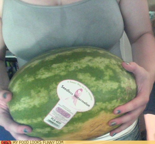 melon,melons,sticker,watermelon