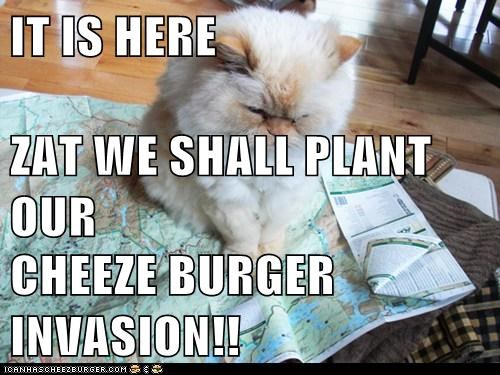 IT IS HERE ZAT WE SHALL PLANT OUR CHEEZE BURGER INVASION!!