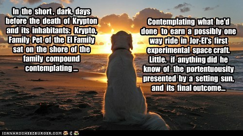 In  the  short ,  dark,  days  before  the  death  of  Krypton and  its  inhabitants:   Krypto, Family  Pet  of  the  El Family  sat  on  the  shore  of  the  family  compound  contemplating ...