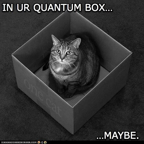 boxes,cardboard box,Cats,physics,quantum mechanics,quantum physics