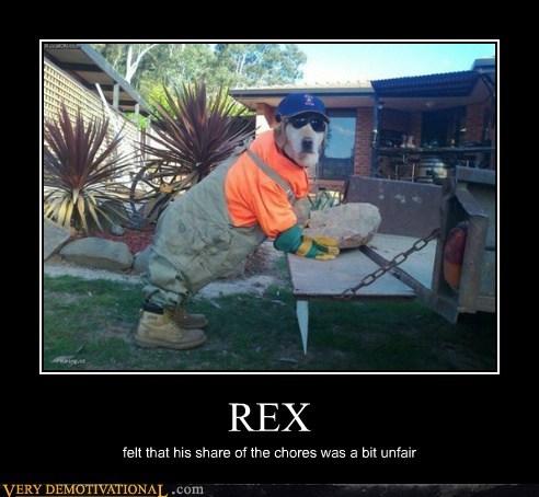 chores,dogs,hilarious,rex,unfair,working