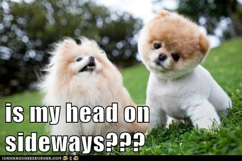 is my head on sideways???