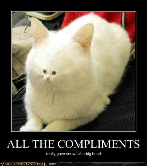 ALL THE COMPLIMENTS