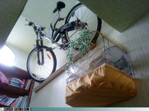 bike,hang,shelf,wall,wtf
