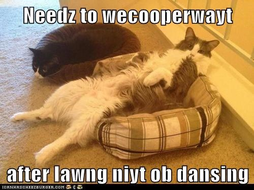 Needz to wecooperwayt  after lawng niyt ob dansing