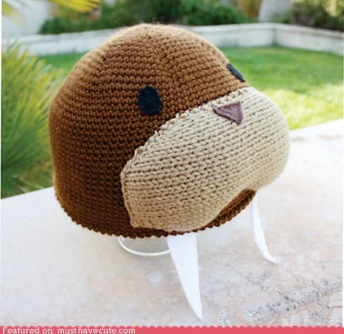 hat,knit,tusks,walrus