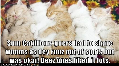 Sum Catillionz-goers had to share wooms as dey runz out of spots but was okai! Deez ones liked it lots.