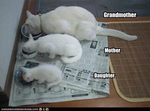LIKE MOTHER, LIKE DAUGHTER; LIKE MOTHER, LIKE DAUGHTER!
