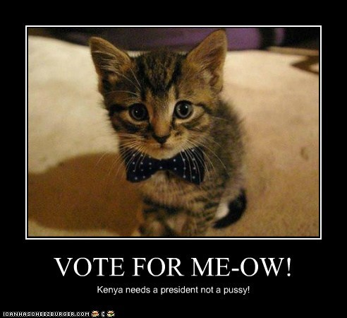 VOTE FOR ME-OW!
