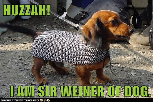 HUZZAH!  I AM SIR WEINER OF DOG.