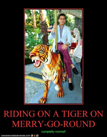 RIDING ON A TIGER ON MERRY-GO-ROUND