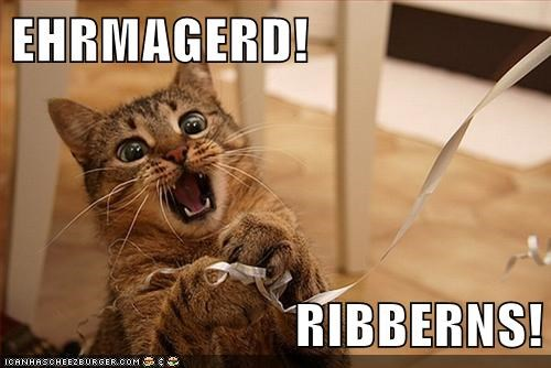 berks,captions,Cats,Ermahgerd,omg,play,ribbons,shiny,toy