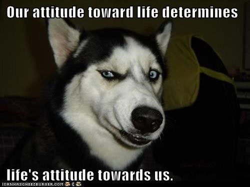 Our attitude toward life determines   life's attitude towards us.