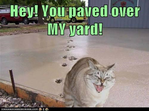 Hey! You paved over MY yard!