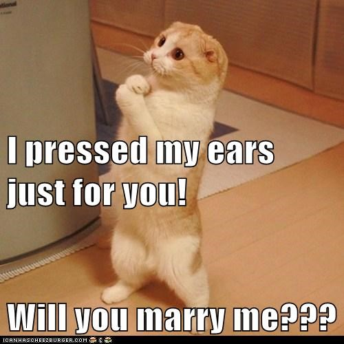 I pressed my ears just for you! Will you marry me???