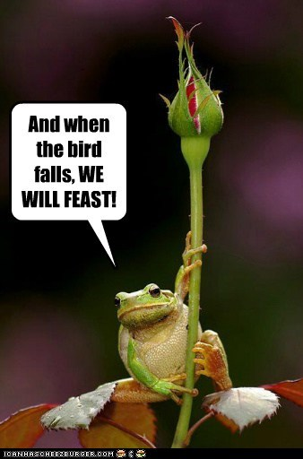And when the bird falls, WE WILL FEAST!