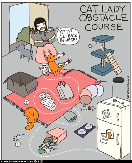 Cat Lady Obstacle Course
