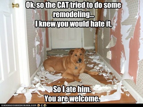 Ok, so the CAT tried to do some remodeling...  I knew you would hate it,