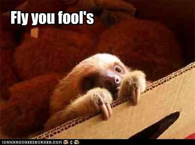 Gand-sloth the Grey