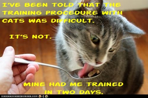 Cat Truisms - training