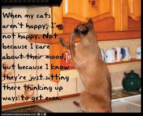 Cat Truisms - getting even