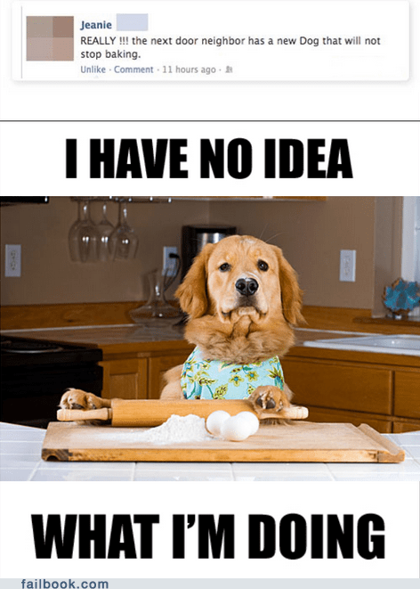 Silly Dog. You Can't Bake. You're a Dog
