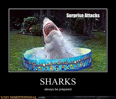 be prepared,pool,scary,sharks,Terrifying
